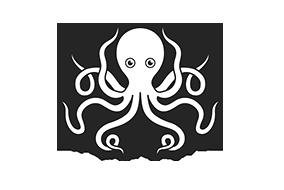 octopus infotech